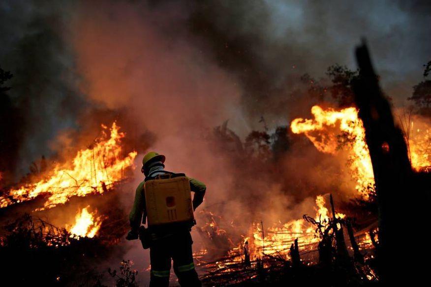 Ibama determina que brigadas de combate a incêndio retornem às atividades -  ClickPB