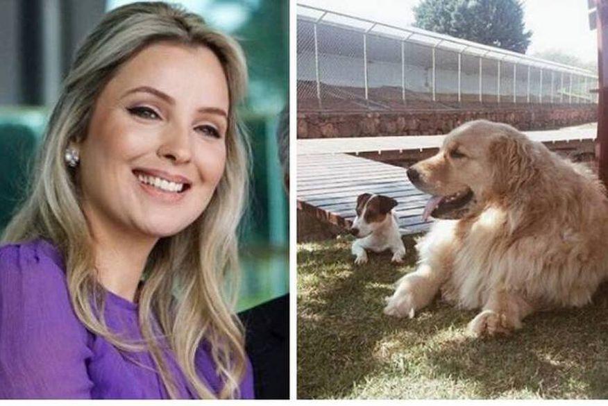 Resultado de imagem para Marcela Temer pula em lago para salvar seu cachorro e afasta segurança que não ajudou